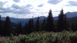 Фото из тура Дорога к солнцу - Говерла!, 16 августа 2019 от туриста Dariya