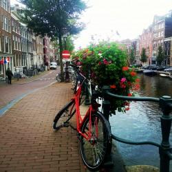 Фото из тура Яркий Бенилюкс: Нидерланды, Бельгия и Люксембург!, 06 октября 2019 от туриста Наталья