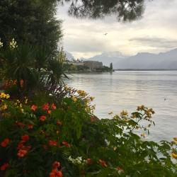 Фото из тура В гостях у ШвейцарииЦюрих, Люцерн, Женева, Берн, Интерлакен, 13 октября 2019 от туриста Helen
