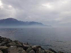 Фото из тура В гостях у ШвейцарииЦюрих, Люцерн, Женева, Берн, Интерлакен, 19 октября 2019 от туриста Альона