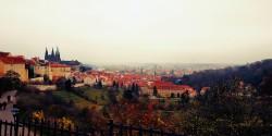 Фото из тура Первая любовь... Прага, 23 ноября 2019 от туриста MiheUshka