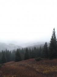Фото из тура А над Говерлой зимние облака!, 27 ноября 2019 от туриста Vitaly