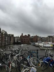 Фото из тура Миг счастья в Амстердаме, 12 декабря 2019 от туриста Наталя