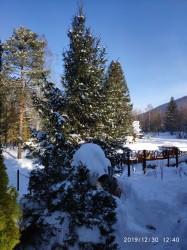 Фото из тура Радуга Карпат!, 30 декабря 2019 от туриста Ирина