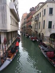 Фото из тура Безупречная парочка: Рим+Венеция, 22 ноября 2019 от туриста Ira