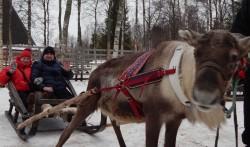 Фото из тура Страна Санта КлаусаЛапландское приключение, 28 марта 2019 от туриста Владимир