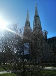 Фото из тура Душевный УикендКраков, Прага, Вена, Будапешт + Эгер, 11 марта 2020 от туриста Елизавета