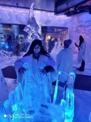 Фото из тура Страна Санта КлаусаЛапландское приключение, 28 декабря 2019 от туриста Ульяна
