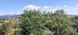 Фото из тура Теплый уикенд: Закарпатье и термалы!, 22 августа 2020 от туриста Спринглс
