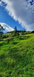 Фото из тура А над Говерлой - облака!, 23 августа 2020 от туриста Алёна