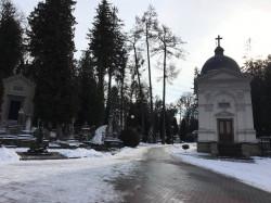 Фото из тура Добрые сны старинного города, 29 января 2021 от туриста Anton