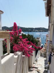 Фото из тура Сиеста у греков:отдых на Эгейском море + Охридское озеро + Белград, 07 июля 2021 от туриста Natali