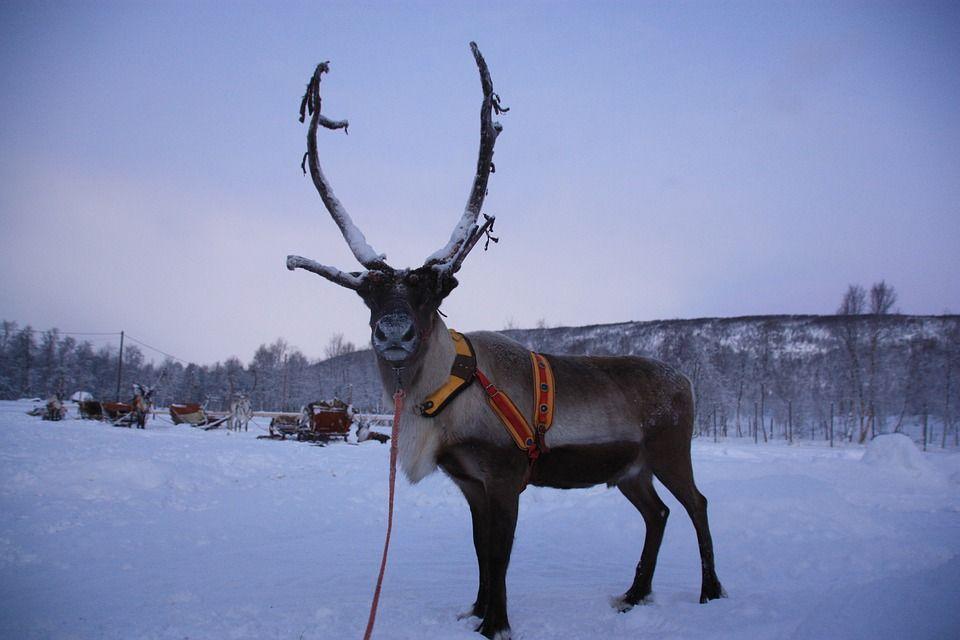 Санта Парк, Фінляндія