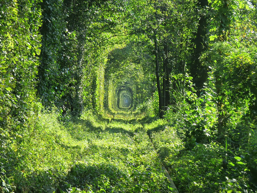 Тунель кохання, Україна