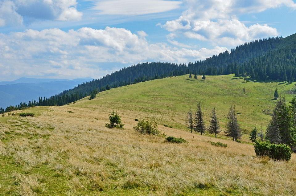 Карпаты, Украина
