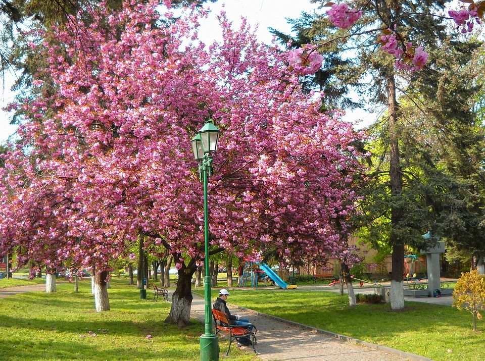 Ужгород, Украина