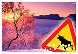 Європа - Фінляндія, Нокіа, хаскі, ікра, червона риба, Санта Клаус, Гельсінкі, Автобусні тури, Тури для школярів, Осінні канікули, море